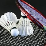 Badminton Fall 2021